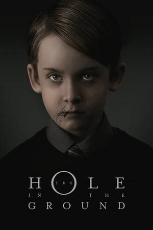 Poster Movie The Hole in the Ground 2019