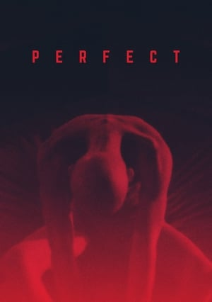 Poster Movie Perfect 2018