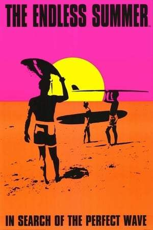 Image The Endless Summer