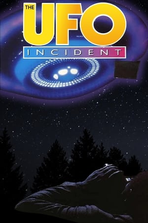 Image The UFO Incident