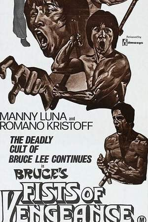 Bruce's Fists Of Vengeance
