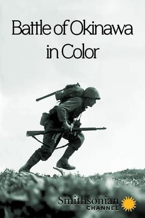 Poster Movie Battle of Okinawa in Color 2017