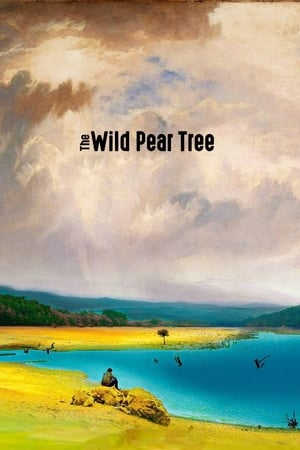 Poster Movie The Wild Pear Tree 2018