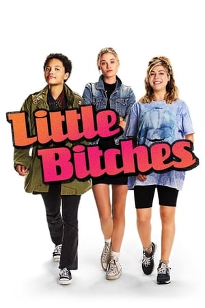 Poster Movie Little Bitches 2018