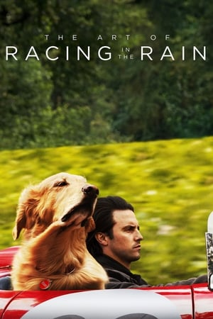 Poster Movie The Art of Racing in the Rain 2019