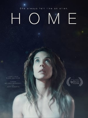 Poster Movie Home 2017