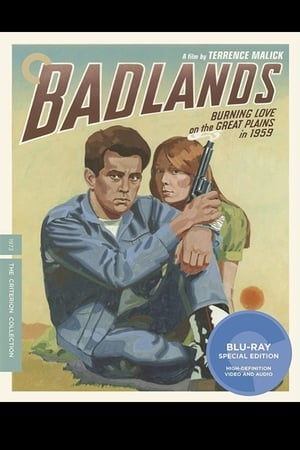 Making 'Badlands'