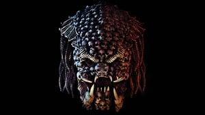 The Predator (2018)
