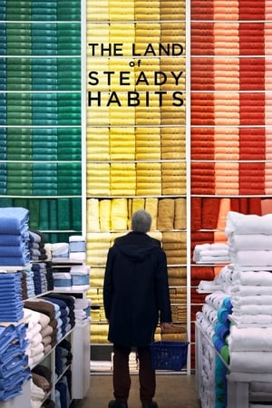 Poster Movie The Land of Steady Habits 2018