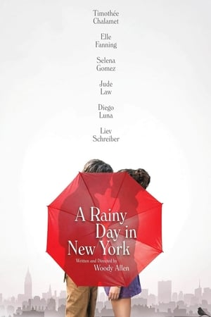 poster A Rainy Day in New York