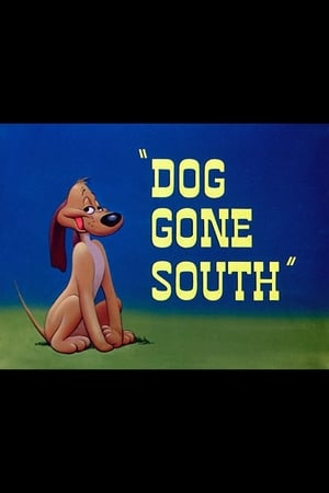 Dog Gone South