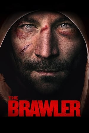 Poster Movie The Brawler 2019