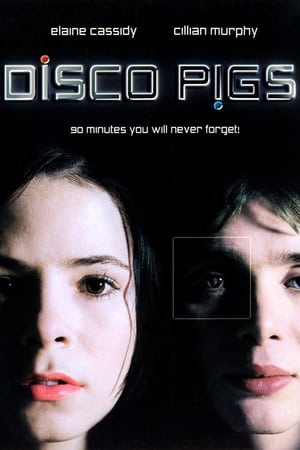 Image Disco Pigs