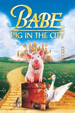 Image Babe: Pig in the City
