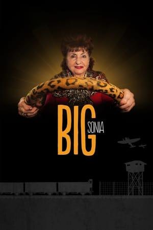 Poster Movie Big Sonia 2017