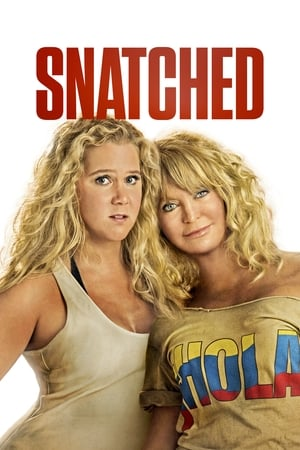 Watch Movie Online Snatched (2017)