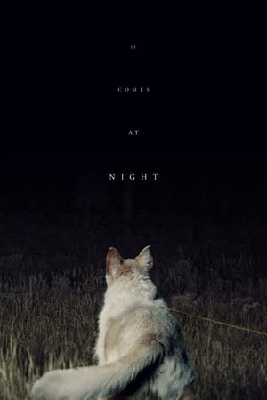 Poster Movie It Comes at Night 2017