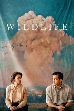 Poster Movie Wildlife 2018