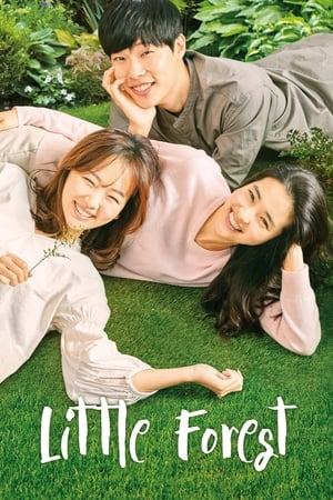Poster Movie Little Forest 2018