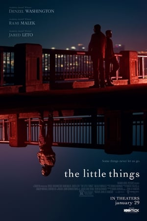poster The Little Things