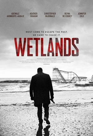 Poster Movie Wetlands 2017