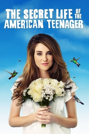 Image The Secret Life of the American Teenager