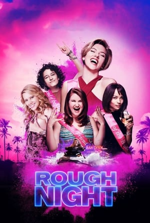 Streaming Movie Rough Night (2017)