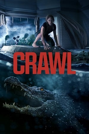Poster Movie Crawl 2019