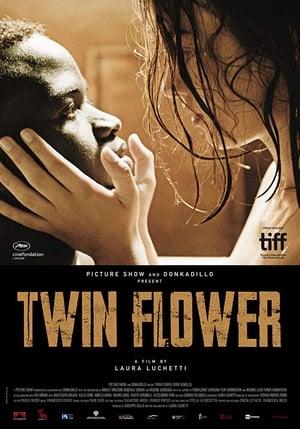 Poster Movie Twin Flower 2018