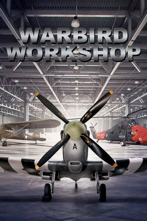 Warbird Workshop