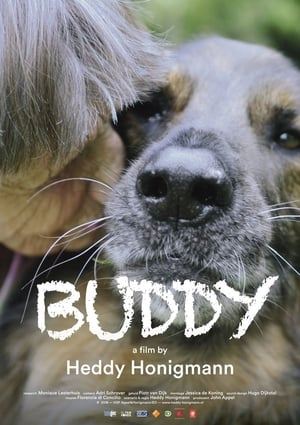 Poster Movie Buddy 2019