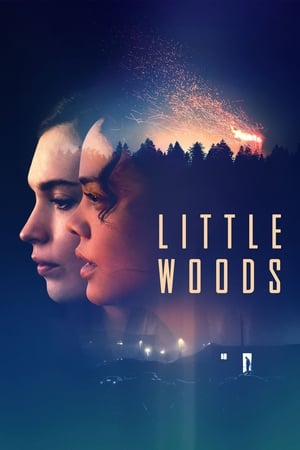 Poster Movie Little Woods 2019