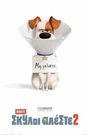 poster The Secret Life of Pets 2
