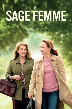 Streaming Full Movie The Midwife (2017) Online