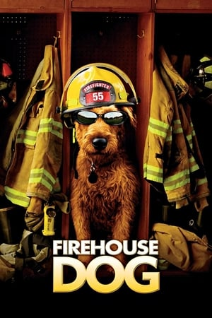 Image Firehouse Dog