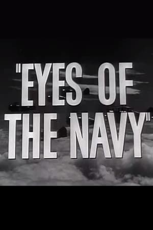 Image Eyes of the Navy