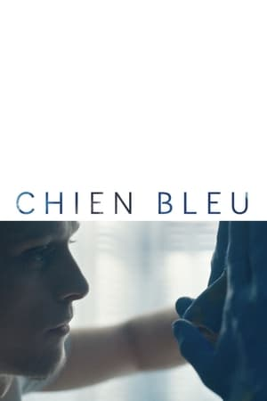 Poster Movie Blue Dog 2018