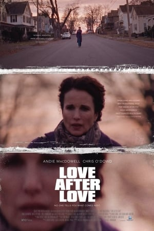 Poster Movie Love After Love 2018