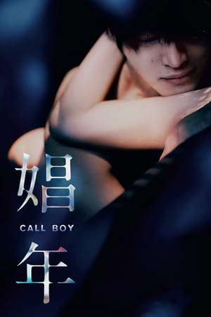 Poster Movie Call Boy 2018