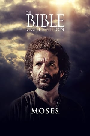 Image Moses