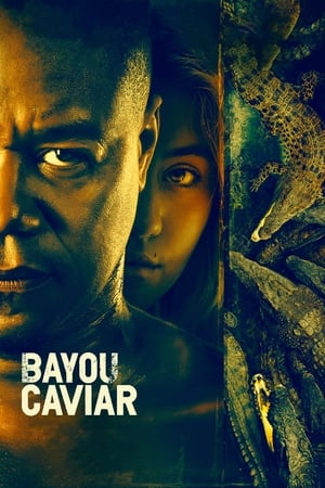 Poster Movie Bayou Caviar 2018