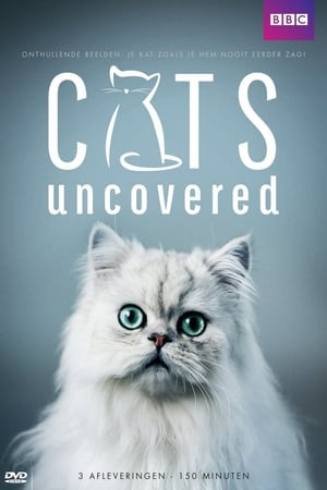 Cats Uncovered
