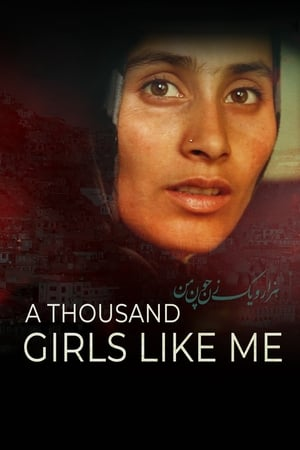 Poster Movie A Thousand Girls Like Me 2019