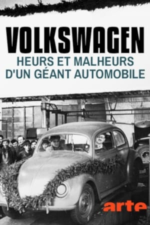 Poster Movie Die Macht und ihr Preis– Die Akte VW 2018