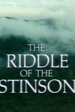 The Riddle of the Stinson