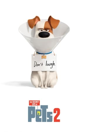 Poster Movie The Secret Life of Pets 2 2019