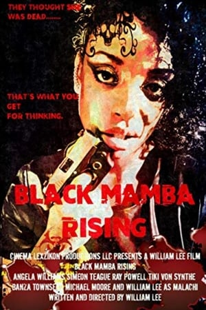 Poster Movie Black Mamba 2018