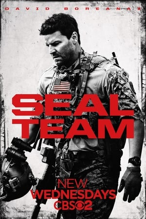 poster SEAL Team
