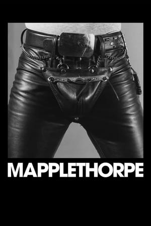 Poster Movie Mapplethorpe 2018