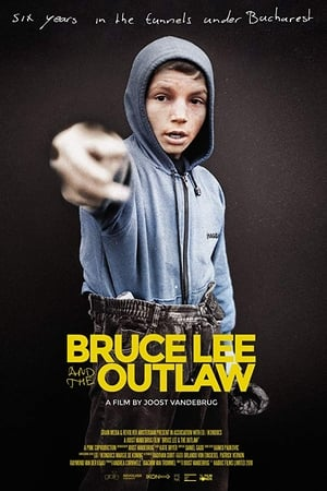 Download And Watch Full Movie Bruce Lee And The Outlaw 2018